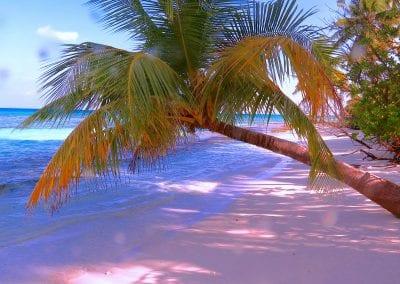 остров Дигура (Dhigurah), Мальдивы