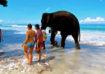 Хэвлок, Андаманские острова, пляж №7