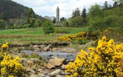Глендалох Национальный парк Виклоу. Ирландия