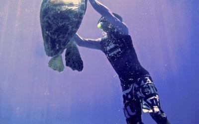 Острова Гили. Снорклинг с черепахами