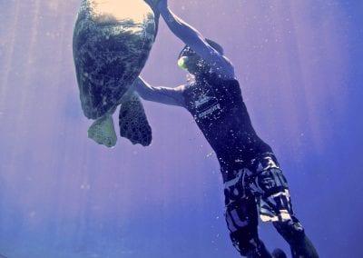 Острова Гили, снорклинг с черепахами